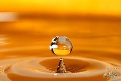 IMG_3782 (Al720) Tags: water drops wasser waterdrops wassertropfen tropfen