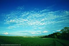 Green & Blue (Mark Crawshaw) Tags: trees field landscape sheffield bluesky farmland greenfield cropfield ecclesfield canon5dmarkii markcrawshawphotography