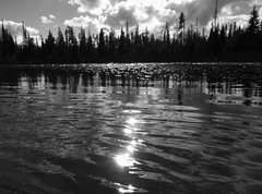 Hosmer Lake (Powskichic of Bend) Tags: trees sun sunlight white black wet water glass monochrome pine clouds oregon forest waves lily bend calm serene ripples pads createbeauty powskichic powskichicofbend brendareidirwin