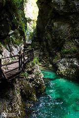 Sloveni (IrregularThemes) Tags: canyon vintgar sloveni