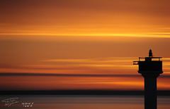 Port de Rivedoux - Ile de R (Philippe Kerignard) Tags: sea sun lighthouse set port pose de soleil hare long exposure coucher ile exposition shore pont rise plage r lev longue rivedoux