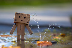 Danbo cooling down in the park (CecilieSonstebyPhotography) Tags: macro wet leaves oslo closeup canon shower droplets bokeh outdoor leak danbo ef100mm macro100mm canon60d canoneos60d
