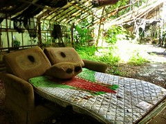 Have a Seat (Lilah Spencer) Tags: abandoned tongue scary bed sleep explore greenhouse urbex urbexing