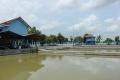 Balai Benih Ikan Kabupaten Ponorogo, Jawa Timur (Antok Hermawan) Tags: indonesia java tags jawa balai ikan 2014 2016 2015 eastjava jawatimur 2017 kabupaten benih jatim ponorogo pemkab