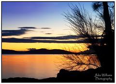 Dawn serenity (juliewilliams11) Tags: sky plants tree clouds sunrise river waterfront outdoor border peaceful australia timeexposure serene photoborder