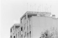 Roma vigne nuove 014 (Nonnismi) Tags: bw rome roma film bn outoffocus suburb periferia antenne antennas 400asa pellicola sfuocato cementoarmato concretebuilding viadellevignenuove