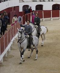 _DSC0486-2 (chris30300) Tags: france les cartagena corrida toro palavas rejon palavaslesflots flots languedocroussillonmidipyrnes languedocroussillonmidipyrn