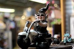 IMG_1151s21FAD (Foto_A_Day) Tags: vintage garden lens gnome bokeh 55mm exa exakta steinheil f19 bokehlicious quinon