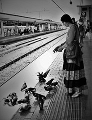 (Mango*Photography) Tags: street city light shadow people white black art station birds train dark photography interesting photographer feeding pigeons fine unusual touching giulia bergonzoni feeelings fipsy