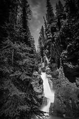 Johnston Canyon Lower Falls (Kane_North) Tags: canada waterfall alberta banff johnstoncanyon