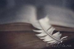 the impossible question (ggcphoto) Tags: freedom book feather question answer bookmark impossible oldbook flypaper whitefeather