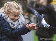 Happiness (Stefan Lambauer) Tags: city cidade paris france girl square kid infant europa child dove frana happiness notredame praa menina fr bonheur carr pomba 2015 stefanlambauer