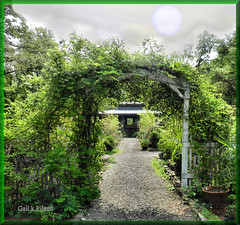 Goodness Grows (gailpiland) Tags: green digital arch path nusery awardtree gailpiland