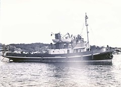"Maritime Services Board ""B"" class tug 'Boray' (State Records NSW) Tags: blackandwhite harbour archives newsouthwales tugboat boray staterecordsnsw"