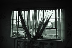 Unloved (Darren Johnson / iDJ Photography) Tags: uk england blackandwhite bw london window dark photography graffiti photo nikon photographer image photos empty images blinds idj bandw battersea derelict vandalised d5000 idjphotography idjphotographyimageimagesphotophotosphotographerphotographynikond5000nikon
