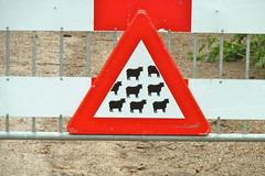 Watch out for Sheep (Michiel2005) Tags: holland netherlands warning sheep nederland paysbas schapen bloemendaal schaap waarschuwing overveen