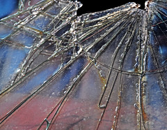 McLean's_0132 (janetliz) Tags: old cars window rusty scrapyard windshield cracked decayed tpmg autowreckers mcleans