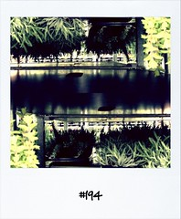 """#DailyPolaroid of 10-4-12 #194 • <a style=""""font-size:0.8em;"""" href=""""http://www.flickr.com/photos/47939785@N05/7088816121/"""" target=""""_blank"""">View on Flickr</a>"""