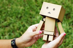 Danbo (VaneGill) Tags: grass toy hands manos grama juguete danbo