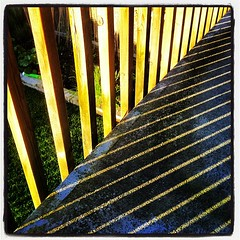 Summer lines.