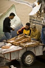 Essaouira, Morocco (ReinierVanOorsouw) Tags: africa travel fish photography market morocco afrika markt vis essaouira marokko reizen videoproduction vismarkt essouira beyondborders reisfotografie reisfotograaf beyondbordersmedia