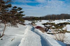 Remembering Winter (cotarr) Tags: winter snow japanesegarden olympus geotag ep2 chicagobotanicgarden cameraraw temp1 17mm cs6 topazdenoise topazdetail cbgwinter iphonetracklogger