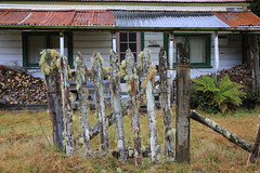 Firewood on the Front Porch Old House Raurimu New Zealand (eriagn) Tags: old travel roof winter newzealand house fern history canon tin eos moss rust gate skiing cut bach porch northisland chopped lichen firewood picket settlement encrusted raurimu railwayhouse eriagn