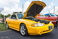 1998 Ford Mustang Cobra (Muncybr) Tags: columbus ford by cobra brian fourthofjuly mustang july4th independanceday columbussquare classiccarshow 3rdannual brianmuncy photographedbybrianmuncy photographedbybrianmuncyphotographed jameshottiii muncy1998