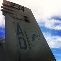 F/A-18 Tail #meetRay #FIA12