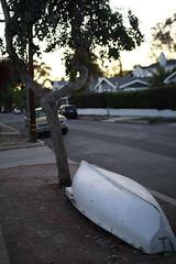 Near the Sunset (Carrie Carter M) Tags: california travel sunset vacation tree nature canon photography la boat san sandiego dusk sigma diego lajolla canoe jolla