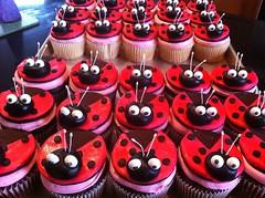 Ladybug Cupcakes from Loudoun Cnty, VA, www.birthdaycakes4free.com