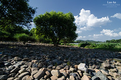 Sea of Stones (Hangzhou) (Andy Brandl (PhotonMix)) Tags: trees summer sunlight lake nature clouds landscape nikon rocks stones westlake shade hangzhou unescoworldheritage tranquil seaofrocks seaofstones d7000 photonmix laoan majiabu
