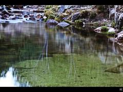 Pedriza. (Miaw.) Tags: madrid naturaleza brown color verde green nature water colors landscapes agua couleurs paisaje vert colores reflejo rocas reflejos pedriza piedras cascada largaexposicin marrn efectoseda canoneos500d reflejoagua