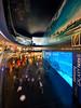 The DUBAI Mall (arfromqatar) Tags: dubai doha thedubaimall arfromqatar panasoniclumix714mmf40 qatar2022fifaworldcup abdulrahmanalkhulaifi olympusomdem5 dubaimallsaquarium