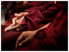 Mudra (Salva Magaz [Om Qui Voyage]) Tags: hand robe buddha main religion monk buddhism bouddha zen mano dharma bodhisattva buda monje bouddhisme karmapa teachings budismo mudra moine vajrayana montchardon enseanzas olympuse3 enseignements oqv salvamagaz karmamingyurling moudra trinlaythayedorje visitekarmapamontchardon2009