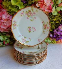 Vintage Limoges Porcelain Salad Plates ~ Roses ~ Gold Gilt (Donna's Collectables) Tags: roses vintage gold salad plates porcelain ~ gilt limoges