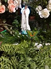SEFAPAMAA - BM (Bruno Campos de Medeiros) Tags: minasgerais de casa minas altar coisas bm casamento vela gira fio decorao tem santo religio tambor criao pomba guia tronqueira guias exu conta cigano terreiro umbanda brunomedeiros contagem ax orixs orix ex fundamento peji curimba og pombogira brunocamposdem umbandareligio
