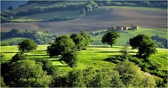 Home Country (Konny D.) Tags: trees verde green primavera alberi rboles farm felder fields grn bume campos springtime frhling finca campi herdade fattoria gehft