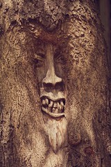Ghost-tree (leola796) Tags: wood tree art face carved nikon gesicht kunst mai holz grumpy baum pieceofart geschnitzt nikond5200
