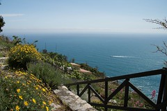 Like a dream... (Gisou68Fr) Tags: sea italy cliff mer fleurs fence boat italia view jardin cinqueterre bateau falaise vue italie riomaggiore clture mermditerrane restanques fencefriday lescinqterres