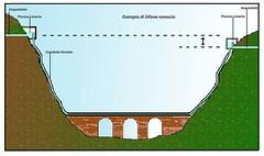 Sifone Rovescio