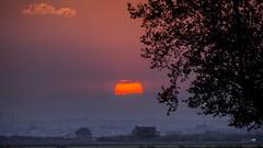 Tarde (Juan Tecles) Tags: sun sol valencia albufera