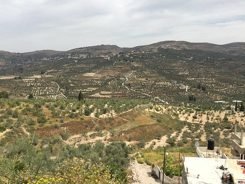 Sebastia is a Palestinian village of over 4,500 inhabitants,located in the Nablus Governorate of the West Bank some 12 kilometers northwest of the city of Nablus., From FlickrPhotos