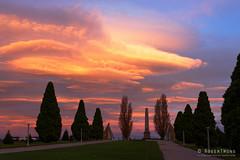 20160612-01-Hobart sunset from the Cenotaph (Roger T Wong) Tags: sunset orange clouds evening australia tasmania hobart cenotaph domain 2016 sony2470 rogertwong sel2470z sonyfe2470mmf4zaosscarlzeissvariotessart sonya7ii sonyilce7m2 sonyalpha7ii