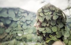 Dos rizomas que compem nossas paisagens (Tuane Eggers) Tags: planta film 35mm natural natureza paisagem ser horizonte rizoma existncia tuaneeggers danieleizirik