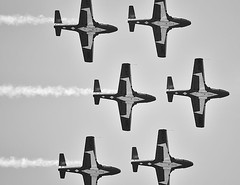 Snow Birds (paulgumbinger) Tags: bw ontario nikon aircraft aviation royal canadian airshow acrobatics trento airforce base trainer forces snowbirds canadair tutor quinte cfb ct114 d5100
