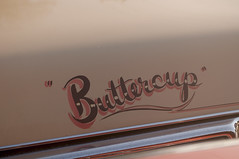 Build Me Up Buttercup.... (ZepGurl89) Tags: cadillac pinstripe vintagecars pinstriping