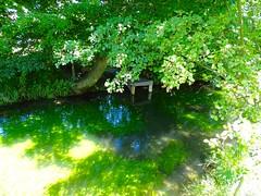 DSC04351 (Mr.J.Martin) Tags: tusslingbavaria bayren germany gapp garden canal village church wildflowers