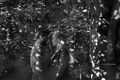 Engagement (Linda Blann Photography) Tags: trees wedding blackandwhite nature monochrome wales engagement yorkshire leeds weddingphotographer weddingphotography yorkshireweddingphotographer weddingphotographerleeds lindablannphotography