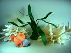 Fish - Hsi-Hua Liu (Rui.Roda) Tags: origami papiroflexia papierfalten poisson pez peixe fish hsihua liu seagrass katrin shumakov corals vincent floderer